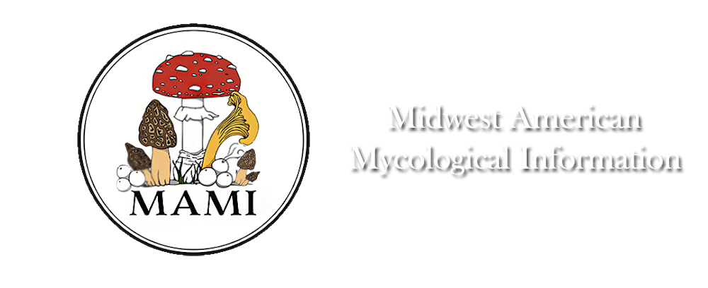Midwest American Mycological Information (MAMI)