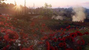 Summer of Battlefield