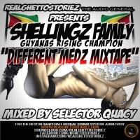 SHELLINGZ FAMILY DIFFERENT MEDZ MIXTAPE