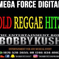 BOBBY KUSH MEGA FORCE DIGITAL OLD REAGGE MIX