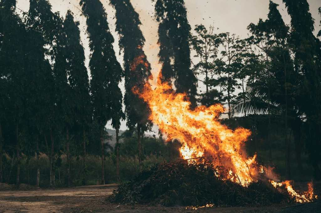 fire, hot, light