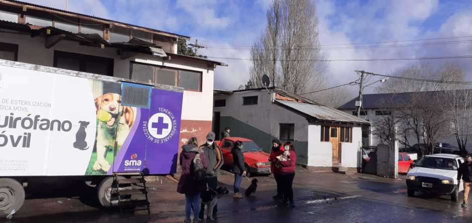 Hoy jornada de castración gratuita de canes en el barrio Buenos Aires Chico