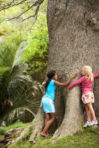 Girls Hugging Large Tree