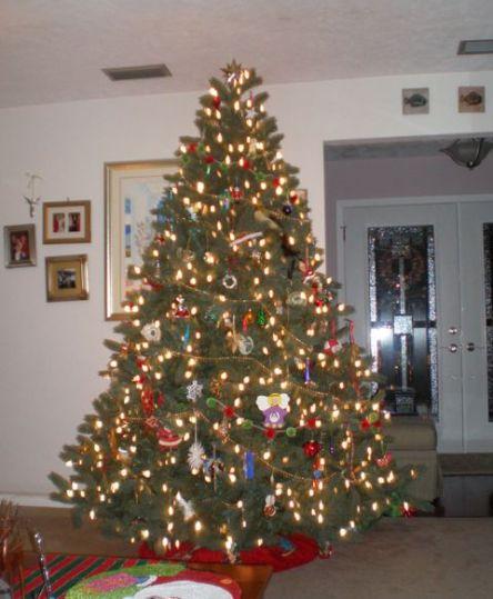 tree-2007.jpg