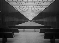 The Genius of Mies' Federal Center