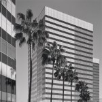 Los Angeles Business Architecture Black and White