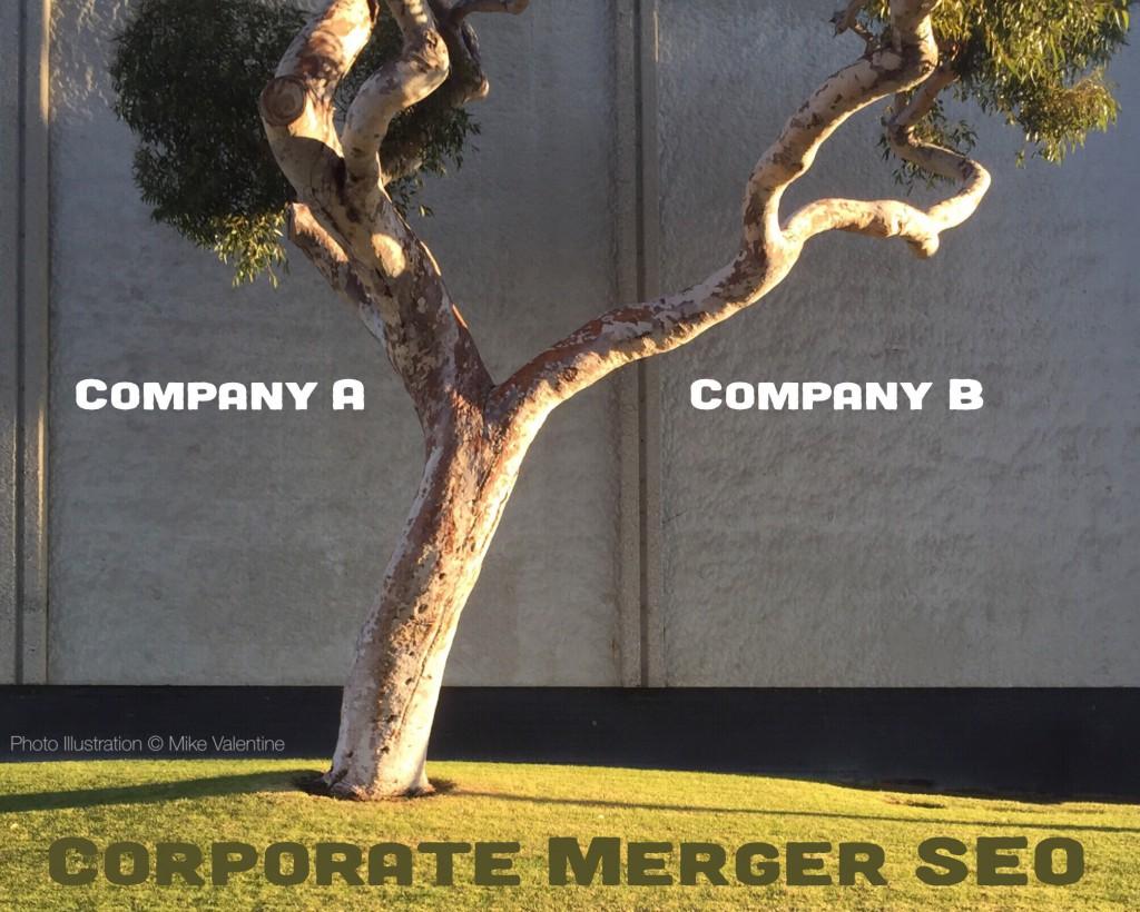 Corporate Merger SEO