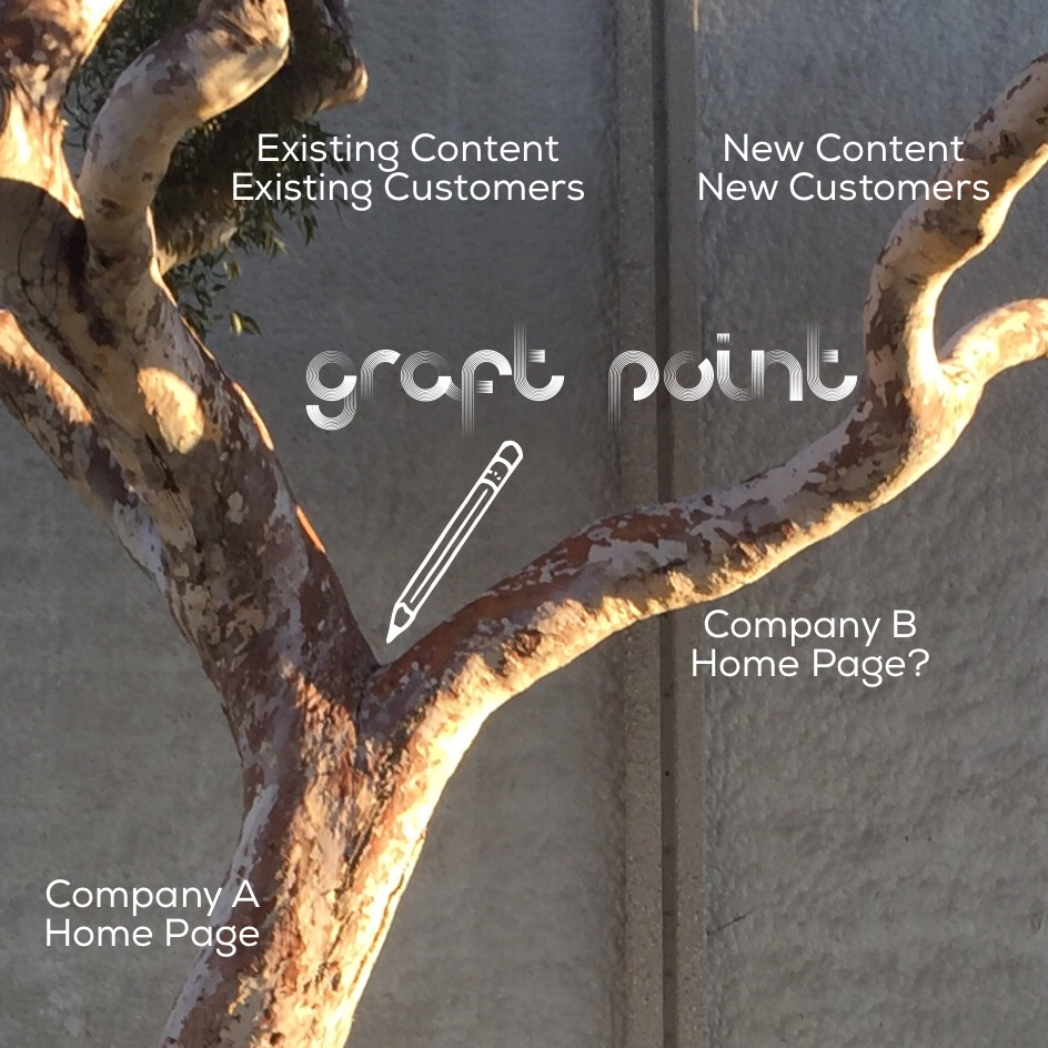 Hierarchy Content Home Page Graft