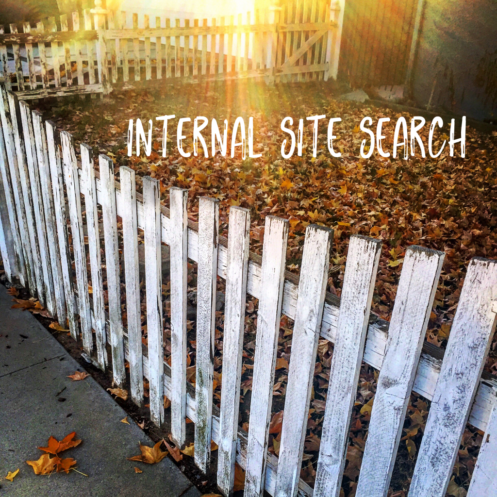 Internal Site Search Illustration