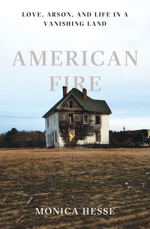 American Fire by Monica Hesse Book Review