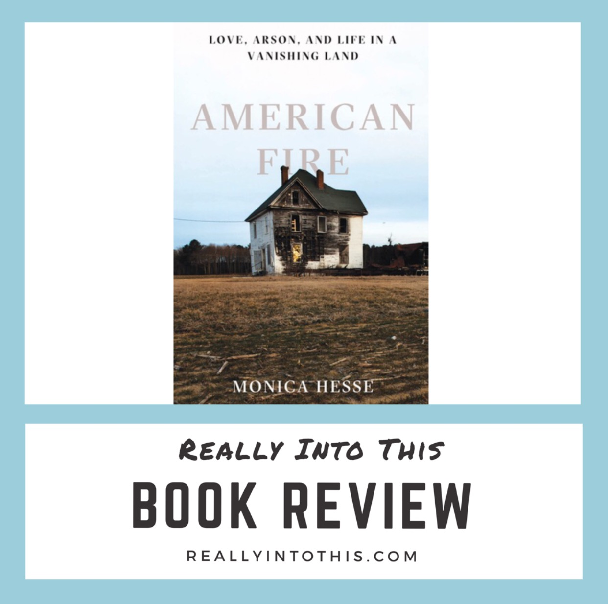 American Fire by Monica Hesse Book Review Really Into This
