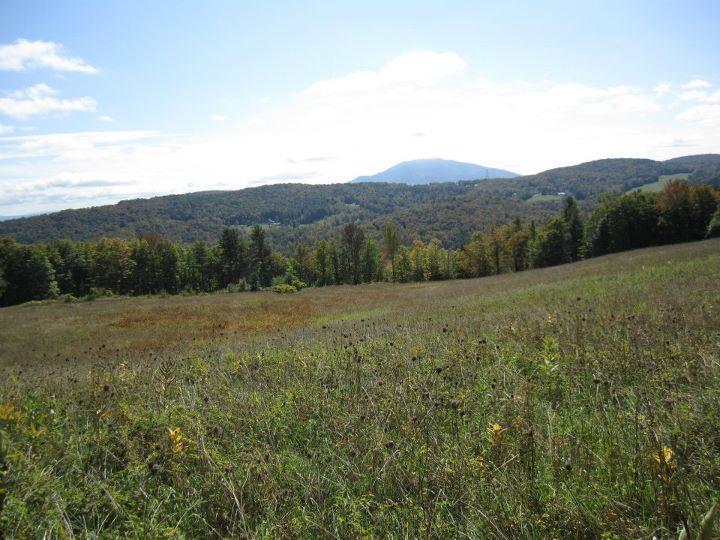 Vermont 50 Recap (Part 4 - Conviction) (3/6)