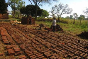 Practice Bricks Drying