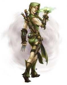 Wild Elf Wild Assassin