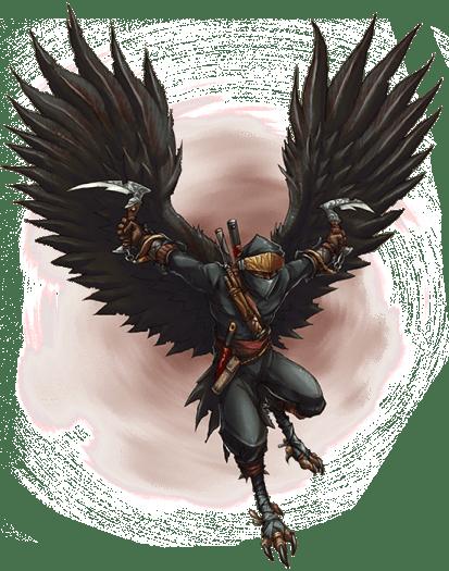 Ninja Class Codex Trimmed