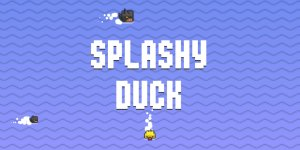 splash duck