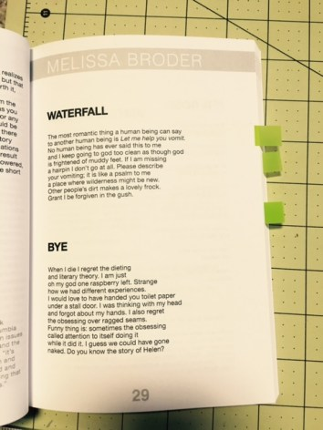 "Melissa Broder's ""Waterfall"" and ""Bye"" in The Yolo Pages"