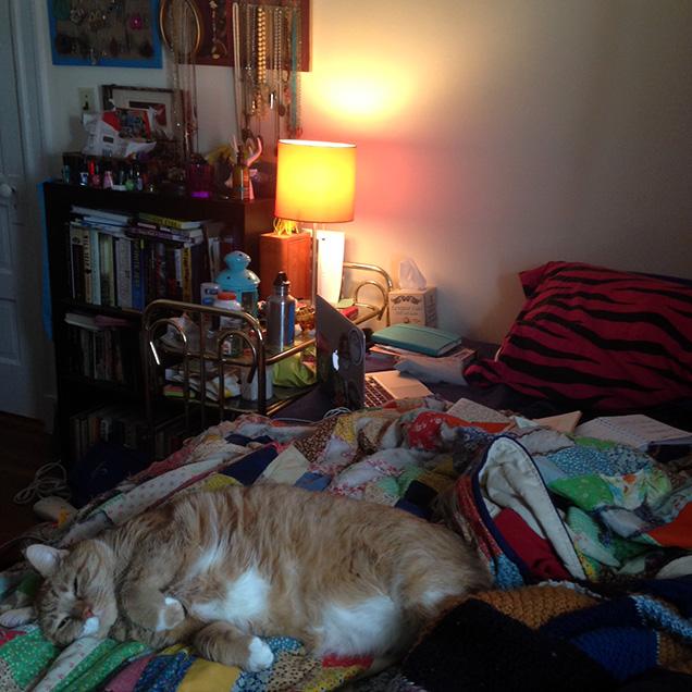 A photograph of writer Cassandra de Alba's workspace