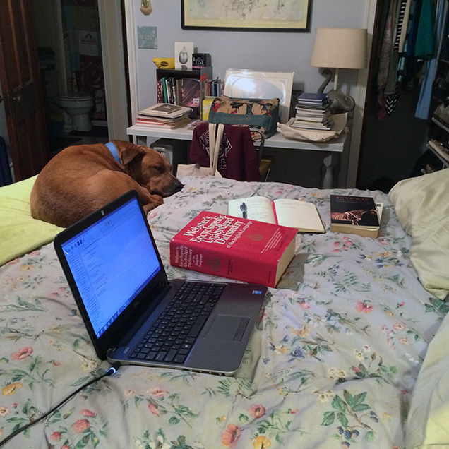 a photograph of the desk of Lindsay Lusby