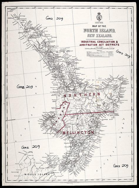 Carolyn DeCarlo on New Zealand