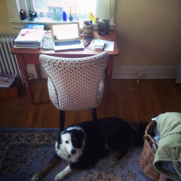 A photograph of Annie Hartnett's desk
