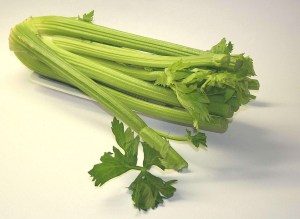 celery Safe Fruit and Vegetable for dogs