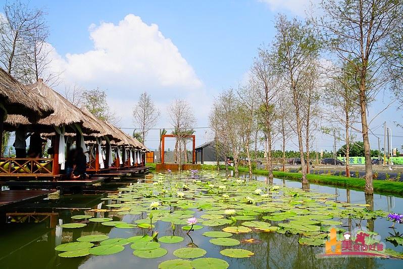【里港新打卡景點】生態池中的峇里島發呆亭 驚見落羽松美景 大啖泰國蝦料理 水明漾水上景觀餐廳