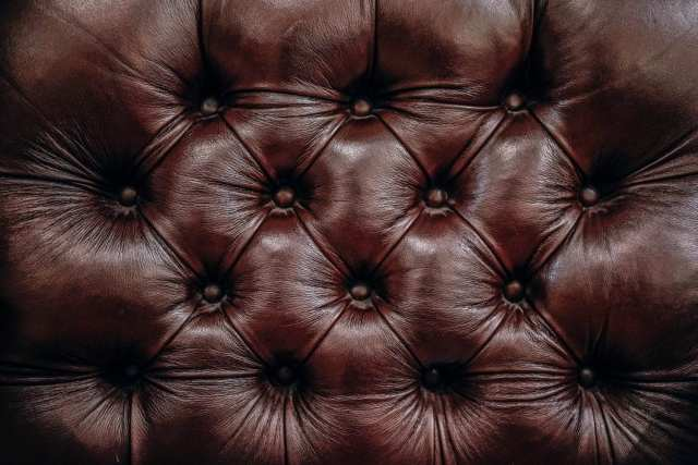 homemade leather couch cleaner