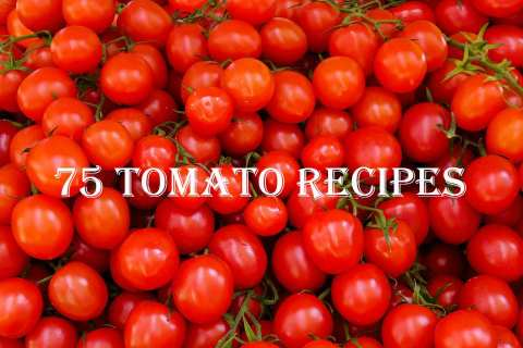 Permalink to: 75 Tomato Recipes for Omnivores, Vegetarians, and Vegans, Too.