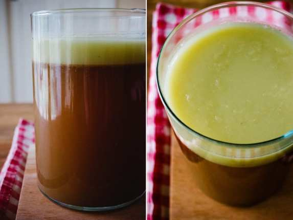 bone broth for dogs recipe