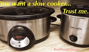 you want a slow cooker... trust me