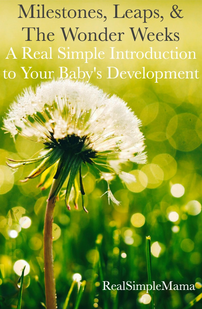 Milestones, Leaps, and the Wonder Weeks: A Real Simple Introduction to Your Baby's Development