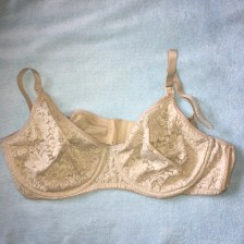 image of realsimplemama.com Gilligan and Omalley from Target lace full coverage underwire breastfeeding nursing bra