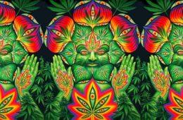cannabis-and-meditation
