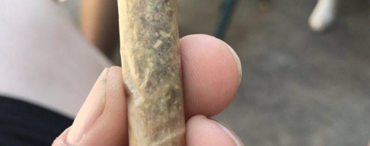 joint rotini innovation