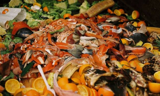 Top 12 tips to reduce food waste for time-poor people