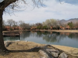 A beautiful Tucson winter day at the lake in the Hill Farm neighborhood