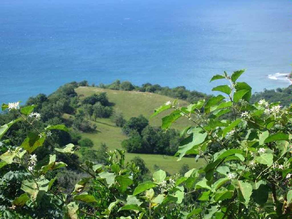 land for sale in laborie st lucia