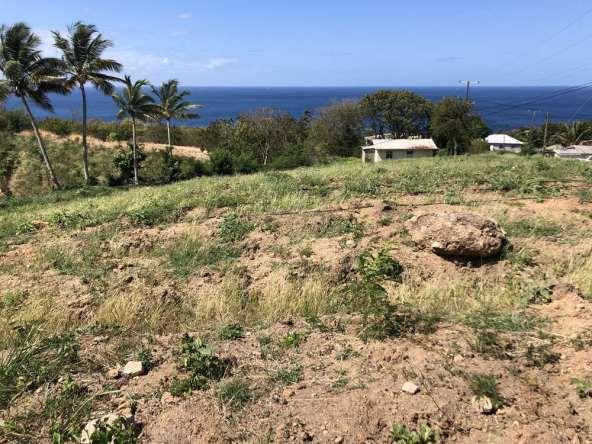 30000 q ft land for sale choiseul