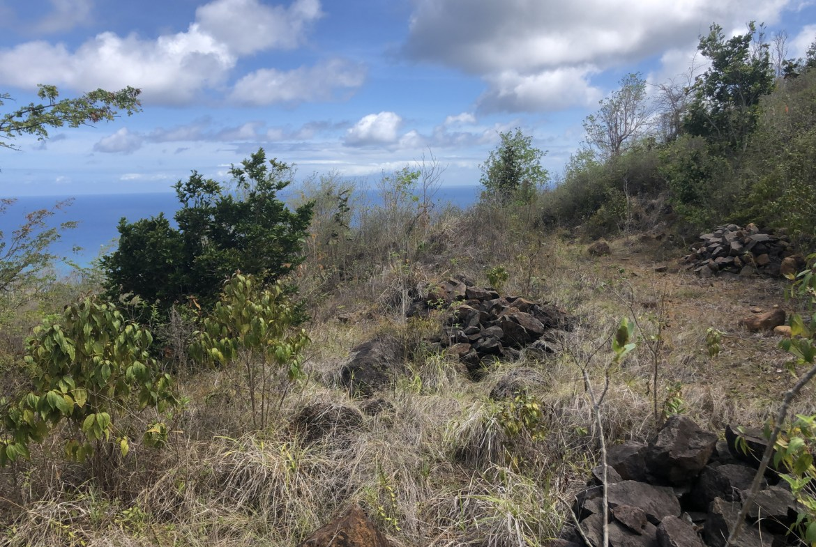 land for sale in laborie homes for sale