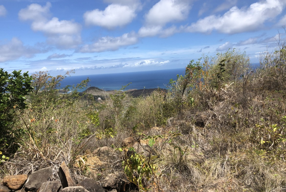 land for sale in laborie homes