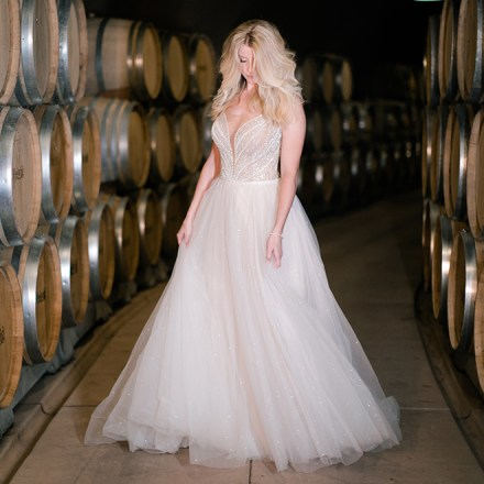 The Bridal Box Roseville Sacramento Wedding Gowns Bridesmaid Dresses Real Weddings Magazine
