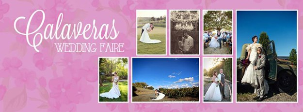 Sacramento Northern California Wedding Bridal Show