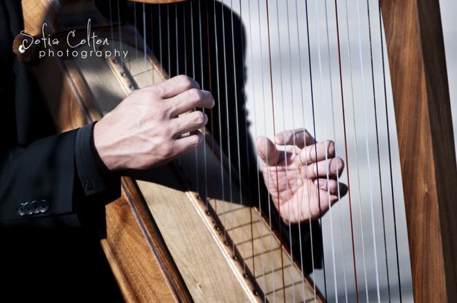 Medieval Wedding Harp 3