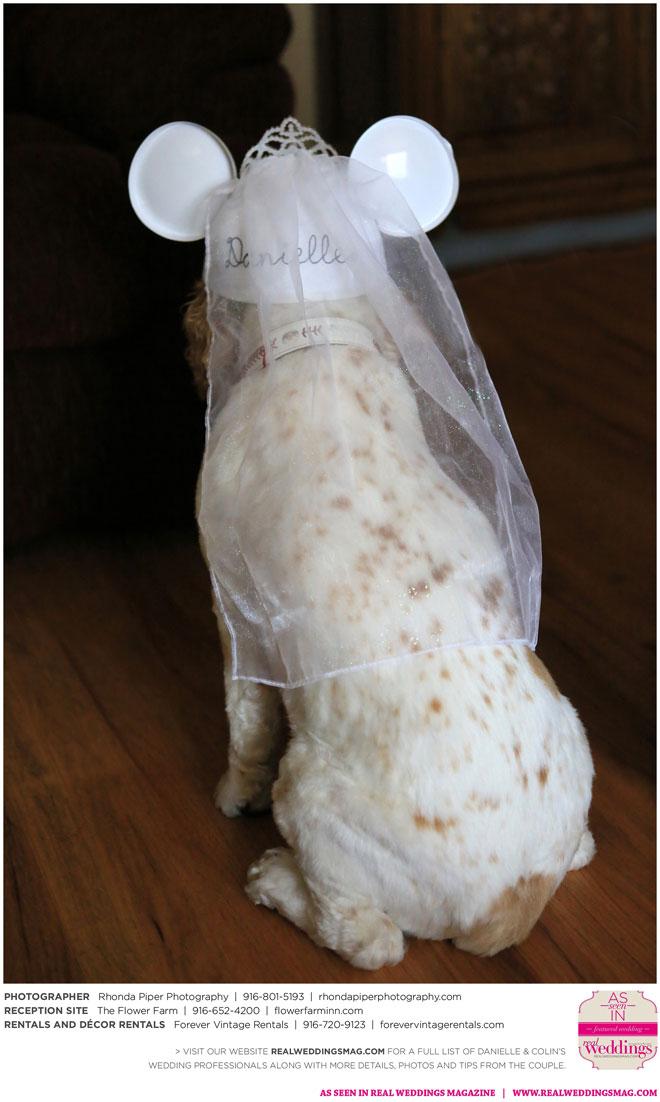 Rhonda_Piper_Photography-Danielle-&-Colin-Real-Weddings-Sacramento-Wedding-Photographer-_0006