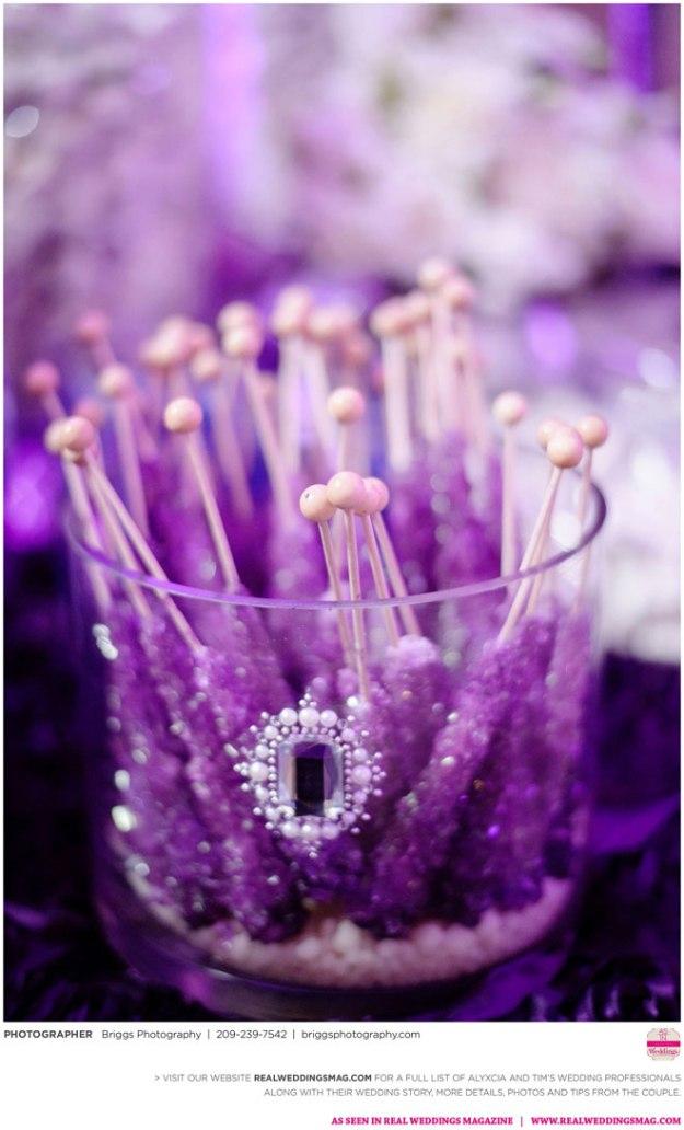 Briggs-Photography-Alyxcia-&-Timothy-Real-Weddings-Sacramento-Wedding-Photographer-_0061