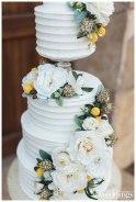 Ty-Pentecost-Photography-Sacramento-Real-Weddings-Inspiration-Something-Sweet-Galt-WM-_0059