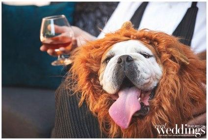 Chris-Morairty-Photography-Sacramento-Real-Weddings-Magazine-This-Is-Me-Get-to-Know_0027