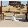 Plymouth Wedding   Real Weddings Wednesday   Rancho Victoria Vineyard   Lixxim Photography   Winery Wedding   Vineyard Wedding