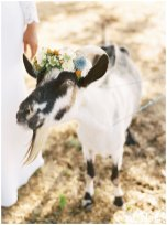 Ashley-Baumgarnter-Photography-Calligraphy-Sacramento-Real-Weddings-Magazine-Country-Charm-Layout-_0012